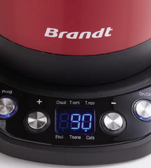 bouilloire temperature reglable