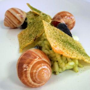 escargots, risotto thé vert et tuiles de parmesan