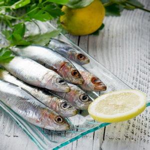 recettes aux anchois et sardines