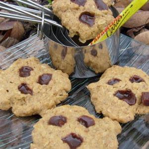 cookies aux speculoos et carambar