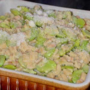 crozotto aux fèves & parmesan