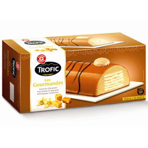 bûche glacée vanille caramel de marque repère