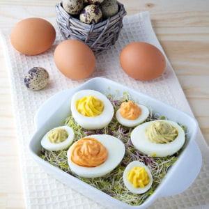 oeufs mimosa au thon 35 recettes pour cuisiner du thon en bo te journal des femmes. Black Bedroom Furniture Sets. Home Design Ideas