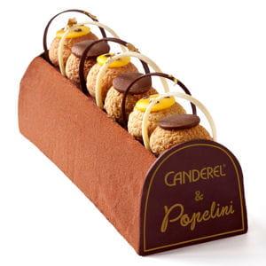 bûche chocolat-passion canderel par popelini