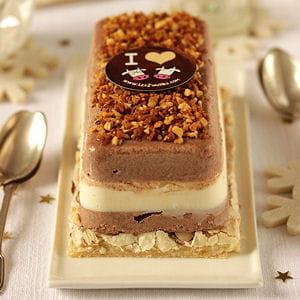 bûche glacée vanille, chocolat et pralin