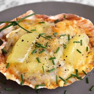 Coquilles st jacques gratin es 80 recettes de la mer - Comment cuisiner les coquilles st jacques congelees ...