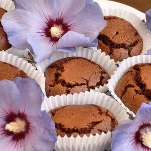 muffins pour p'tits allergiques