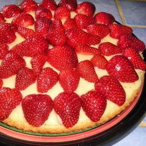 fraisier léger