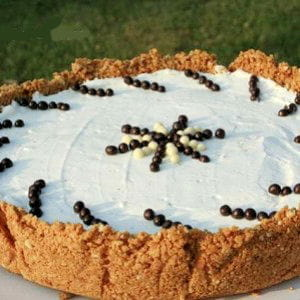 cheesecake vanille sans cuisson