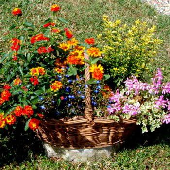 L'art de la récup' au jardin