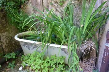 Le jardin se met à la récup'