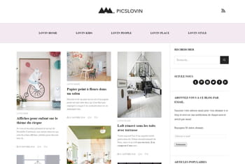 Le blog du moment : Picslovin