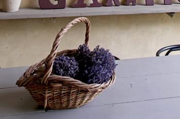 mauvaises odeurs comment les combattre journal des femmes. Black Bedroom Furniture Sets. Home Design Ideas