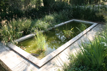 Entretenir un bassin journal des femmes - Deco bassin de jardin ...