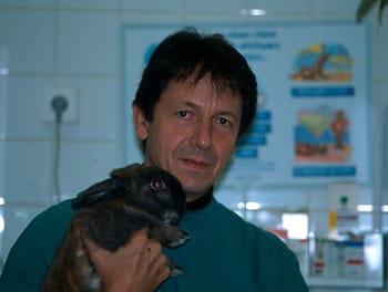 Adoptez un petit mammifère de compagnie