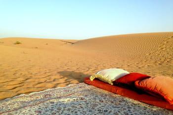Féérie safari ou le désert de Dubaï en excursion*****