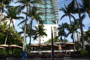 Miami et ses adresses enchanteresses