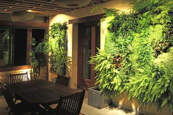 Des murs végétaux