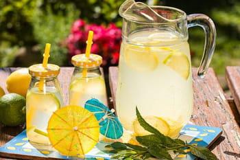 Citronnades, eaux detox et aromatisées : nos recettes fraîcheur