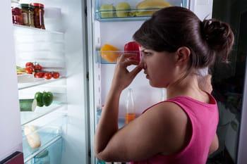 Comment chasser les mauvaises odeurs du r frig rateur journal des femmes - Comment chasser les taupes du jardin ...