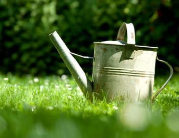 Le calendrier du jardinier du mois de juin