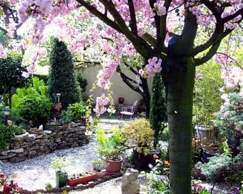 Vos jardins dans le Sud