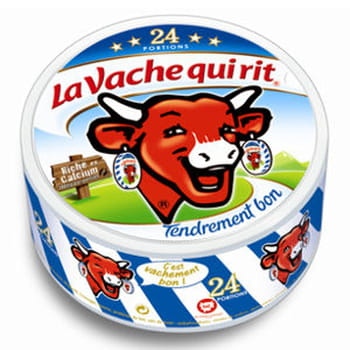 23 recettes &agrave; la Vache qui rit&reg;