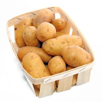 35 recettes avec des pommes de terre