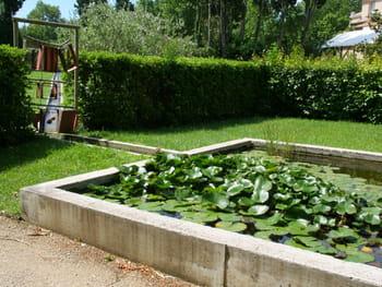Les plus beaux bassins