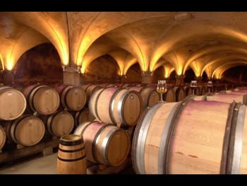 photo vin de garde bordeaux ou bourgogne