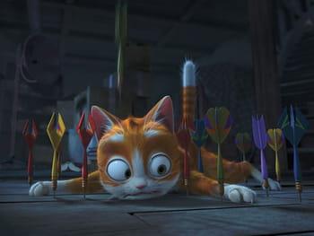 Les chatons dans de drôles de situations