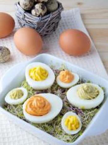 Oeufs mimosa au thon 35 recettes pour cuisiner du thon - Cuisiner du thon en boite ...