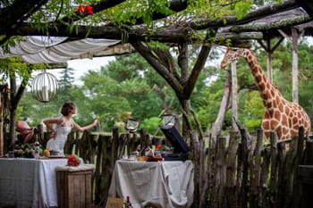 Un mariage Out of Africa : ambiance safari chic !