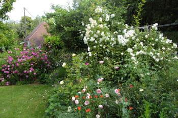 Visitez le jardin anglais de Michelle