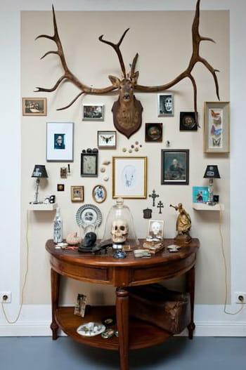 cr er son cabinet de curiosit s journal des femmes. Black Bedroom Furniture Sets. Home Design Ideas
