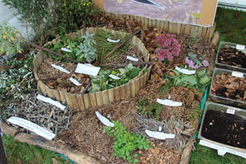 Le paillage végétal, pour un jardin sain et naturel