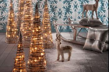 Des sapins de Noël qui changent de l'ordinaire