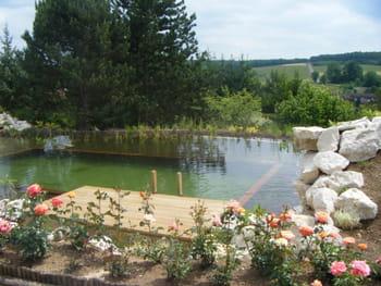 un point d eau dans le jardin par o commencer