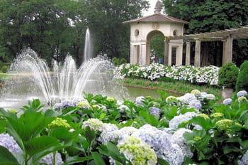 Massifs et parterres floraux