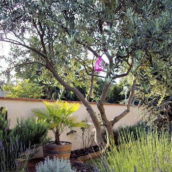 Votre jardin idéal