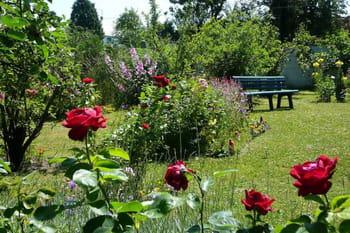 Le jardin très fleuri de Jacqueline