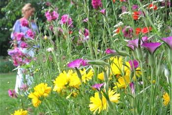Balade poétique dans le jardin de Nadine
