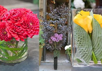 Trois idées de bouquets avec des bulbes d'été