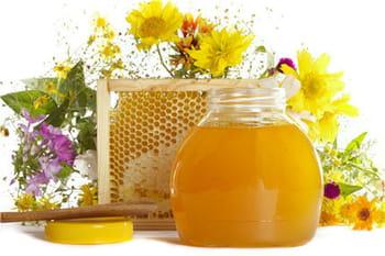 Propolis : plus fort que le miel ?