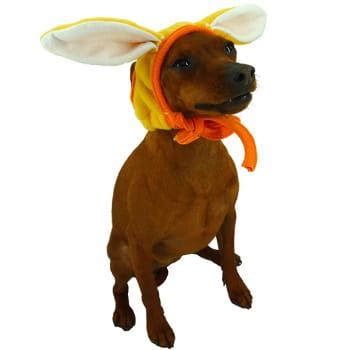 un chien lapin les tenues les plus chaudes pour vos chiens journal des femmes. Black Bedroom Furniture Sets. Home Design Ideas