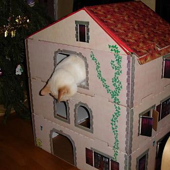 une villa pour votre chat des id es pour couvrir votre animal de cadeaux no l journal des. Black Bedroom Furniture Sets. Home Design Ideas