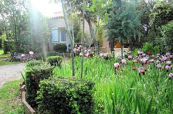 Visitez le jardin de Viviane