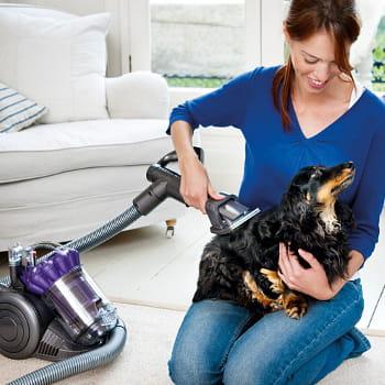 un aspirateur pour toiletter votre chien des objets insolites pour vos animaux de compagnie. Black Bedroom Furniture Sets. Home Design Ideas