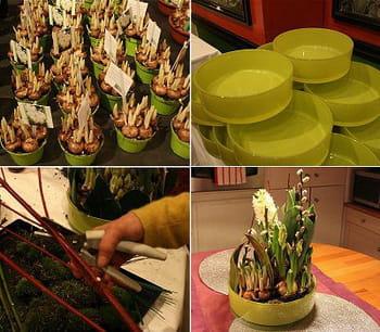 Réalisation d'une composition florale à base de bulbes
