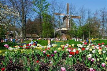 Le parc éphémère Keukenhof